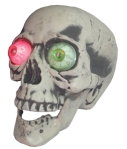 Almost life size skull – has colour changing eyes.
